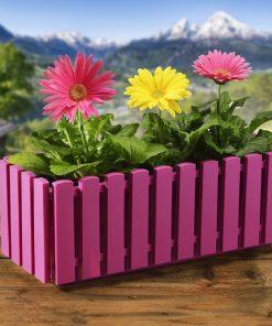 Cvetlično korito fuksija