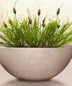 Cvetlični lonec CAPRI sand okrogle oblike